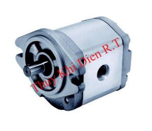 Ext Gear Pump D EGB