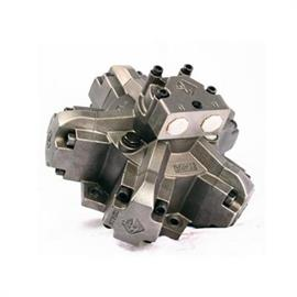 Low speed hydraulic motors